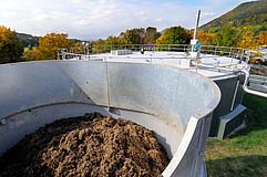Expert List Bioenergy: University of Hohenheim